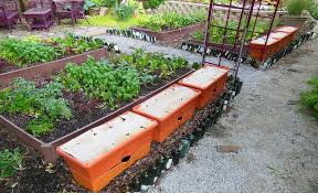 growbox rows