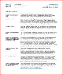 executive summery fantastic executive summary resume business development in summary