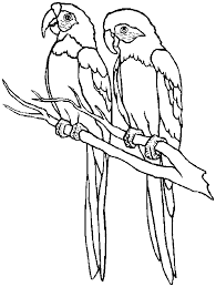 Small Picture Free Printable Parrot Coloring Pages For Kids Coloring Home