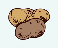 potatoes clipart. Exellent Potatoes Potato Clipart Throughout Potatoes C