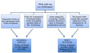 County teen court agency details