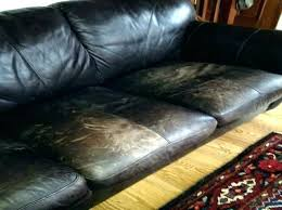 how to fix scratches on leather couch from dog leather couch and dogs leather couch conditioner