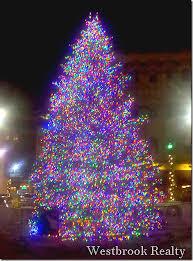 Christmas Tree Rosa Parks Circle
