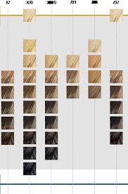 Koleston Perfect Innosense Colour Chart Wella Koleston Perfect Colour Chart Koleston Perfect Online