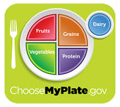 Meal Portion Chart The Choosemyplate Food Guide Girlshealth Gov