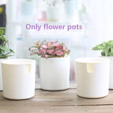 Beautiful Image Is Loading Whiteflowerpotsucculentplantselfwateringplanter Dovekie Finch White Flower Pot Succulent Plant Self Watering Planter Home Garden