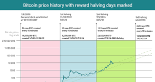 Chart Of The Day Bitcoin Reward Halving And Price History