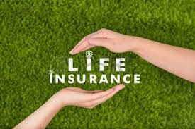 family business concept family life insurance protecting family family concepts stock photo business concepts business life office