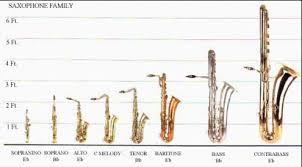 Saxophone Size Chart 33 Proper Saxophone Size Chart