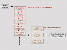 Good Candidate Pathway From Lead To Drug Candidate Suitable For Clinical Trials