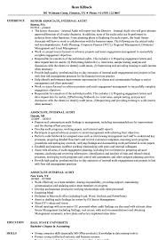 Associate Internal Audit Resume Samples Velvet Jobs