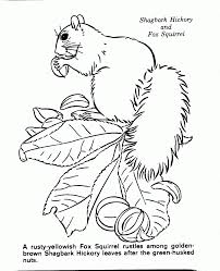 Small Picture Nature Coloring Pages Coloring Page For Kids Kids Coloring