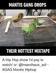 9gag memes and gang mantis gang drops cthaus adi ig their hottest mixtape
