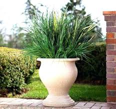 large pot for plants large flower pots for outdoors shaped of with regard to outdoor urns