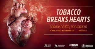 Image result for smoking kills