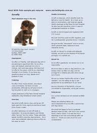 Dog Trainer Cover Letter Sarahepps Com