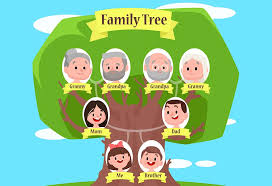 How To Make Family Tree On Chart Paper How To Make A Family Tree 5 Easy Craft Ideas