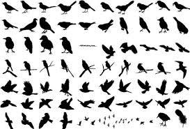 Amazon 商用okバードシルエット217種類以上 鳥シルエットイラスト