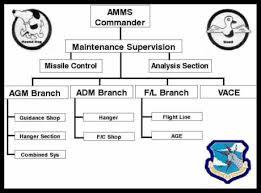 Amms Organizational Chart