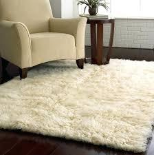 clearance area rugs 5x7 5 7 lamora me