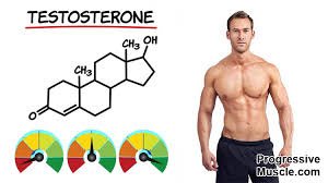 What Are Normal Testosterone Levels For A Man Full Chart