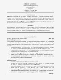 Underwriting Assistant Resumes Insurance Underwriter Resume Sample Unique Underwriting Assistant
