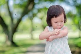 Home Remedies For Mosquito Bites On Babies