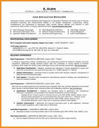 5 Programming Resume Examples Laredo Roses Multimedia Programmer