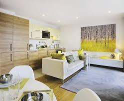 Open Plan Kitchen Living Room Open Concept Living Room Design Thelakehousevacom