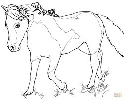 Small Picture Przewalskis Wild Horse coloring page Free Printable Coloring Pages
