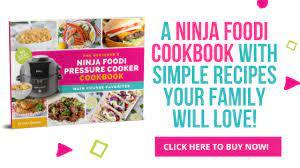 ninja foodi roast en bitz giggles