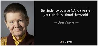 Pema Chodron Quotes Amazing TOP 48 QUOTES BY PEMA CHODRON Of 48 AZ Quotes