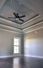 tray lighting. Lovely Trayed Ceiling For Your Interior Design Idea: Tray Lighting Ideas | M