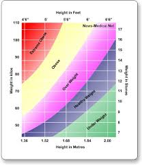 Is My Child Obese Chart What Is Body Mass Index Bmi