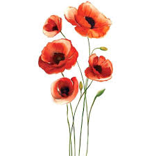 red poppy wall art red poppies wall decal a liked on featuring home home decor red red poppy wall art