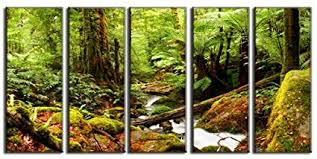 amazon rainforest wall art