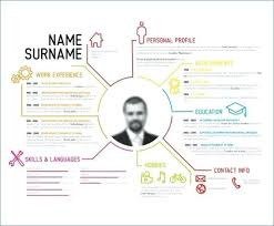 Infographic Resume Template Unique Infographic Resume Template Word Free Ashitennet