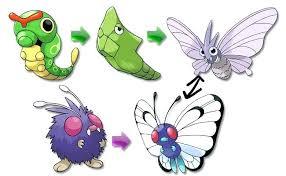 Pokemon Leaf Green Evolution Chart 2019
