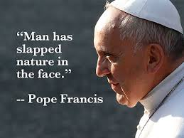 Pope Quotes Interesting EcoPope Francis' 48 Most Memorable Quotes On The Environment
