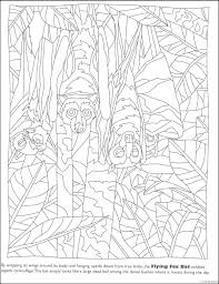 Small Picture Awesome Hidden Picture Coloring Pages Pictures Printable