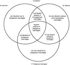 Check out the venn diagram and make sure you agree with where all the elements have been placed. Comparison In Intersectional Discrimination Legal Studies Cambridge Core