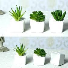 decorative plant pots decorative plant pots or on large house plant pots indoor flower planters decorative