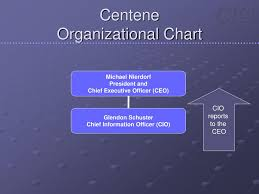 Ppt The Role Of The Chief Information Officer Powerpoint