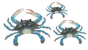 blue crab metal wall art