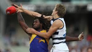 AFL Round 7 Geelong v West Coast Photos The Advocate