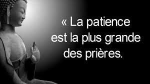 10 Citations De Buddha Pour Te Motiver Citations Motivantes Et Inspirante Pour Réussir