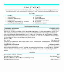 Best Training And Development Resume Example Livecareer