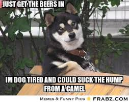 just get the beers in... - Chatty Dog Meme Generator Captionator via Relatably.com