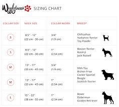 Dog Color Chart Dog Collar Sizes Chart Bedowntowndaytona Com