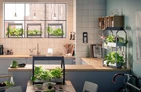 indoor gardening. Modren Gardening Home  Indoor Gardening Gardening Great Ideas To Grow Food Inside On